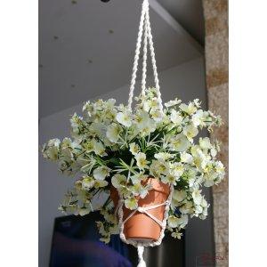 Cascada orhideelor albe
