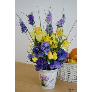 """Lavender"" si irisi 2"